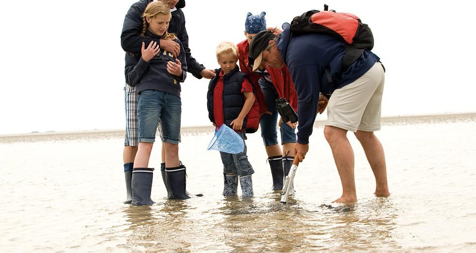 Familienurlaub an der Nordseeküste auf dem 4-Sterne-Ferienhof Peter