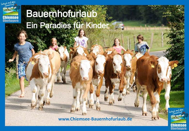 Urlaub auf dem Bauernhof Chiemsee Oberbayern Tiererlebnis