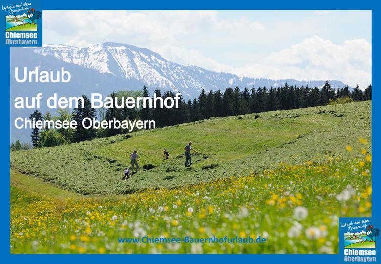 Urlaub auf dem Bauernhof Chiemsee Oberbayern Heuernte
