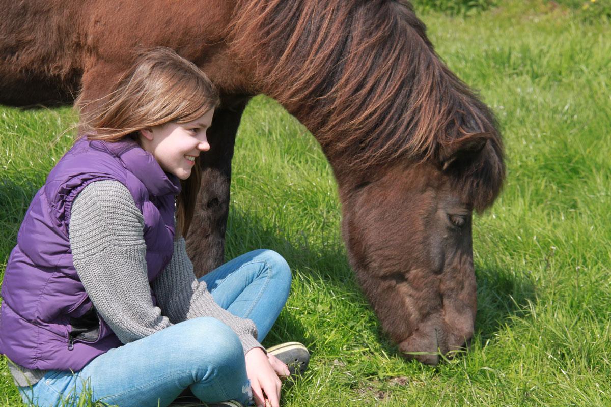 Entspannende Zeit bei den Pferden verbringen - Ferienhof Reining