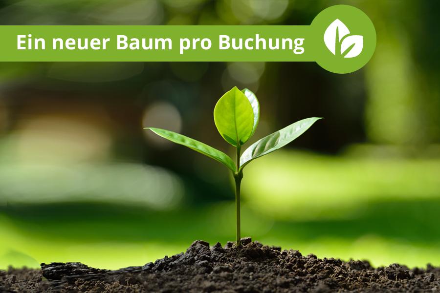 Ein neuer Baum für jede Online-Buchung - Bauernhofurlaub.de unterstützt den Klimaschutz!