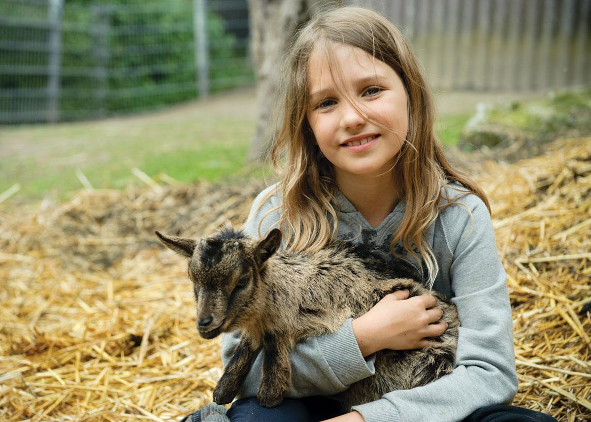 Frühling auf dem Bauernhof - Jetzt kommen die Tierbabys auf die Welt
