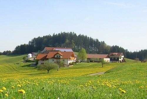 Urlaub auf echten Bauernhöfen