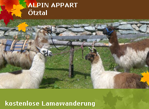 Kostenlose Lamawanderung - Alpin Appart