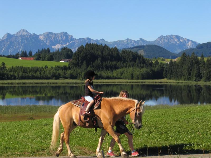 Auch auf Pferde trifft man auf dem Ferienhof Klöck