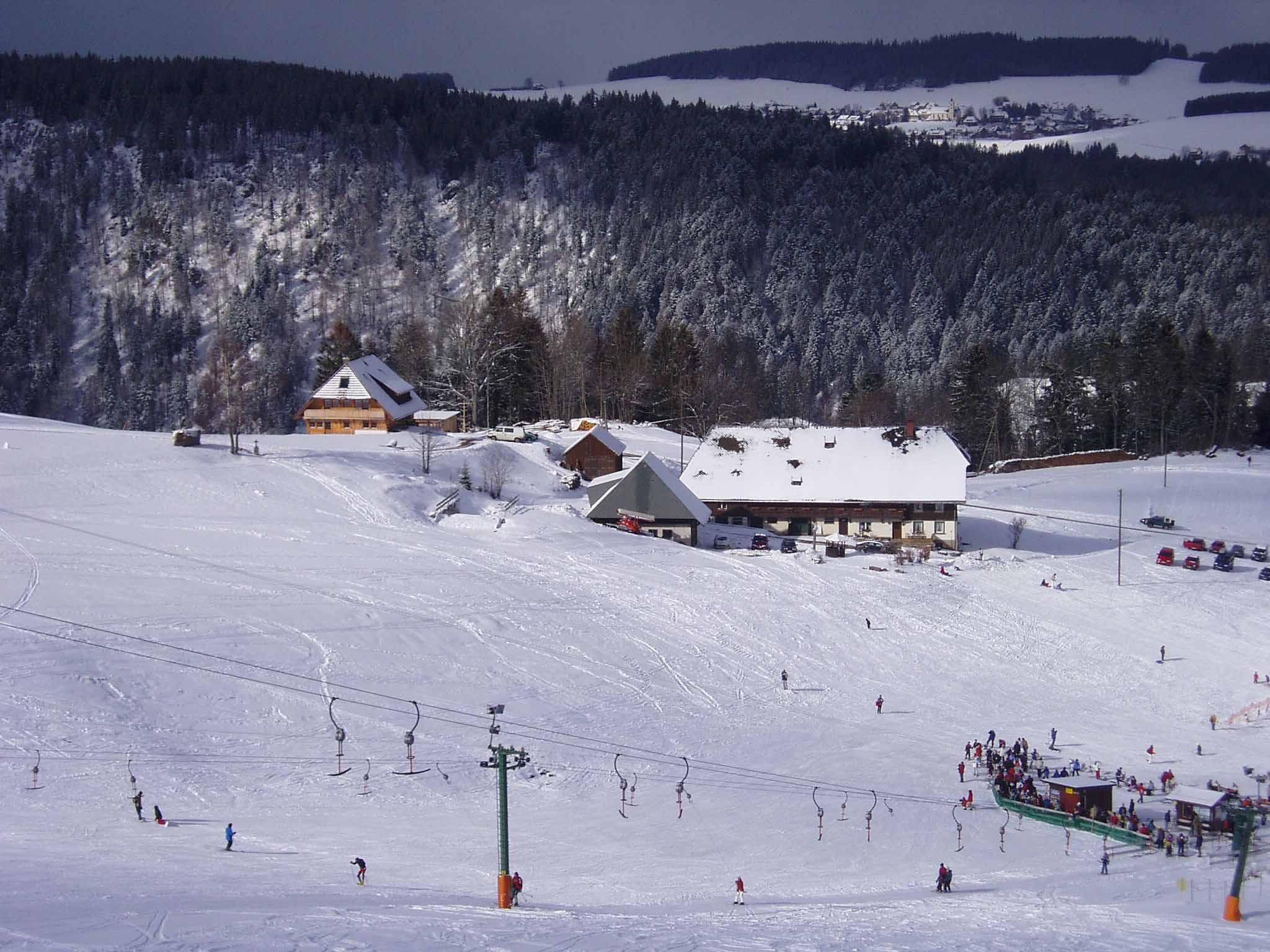 Auch im Winter eine Reise wert mit Skilift in Hofnähe vom Michelthomilishof
