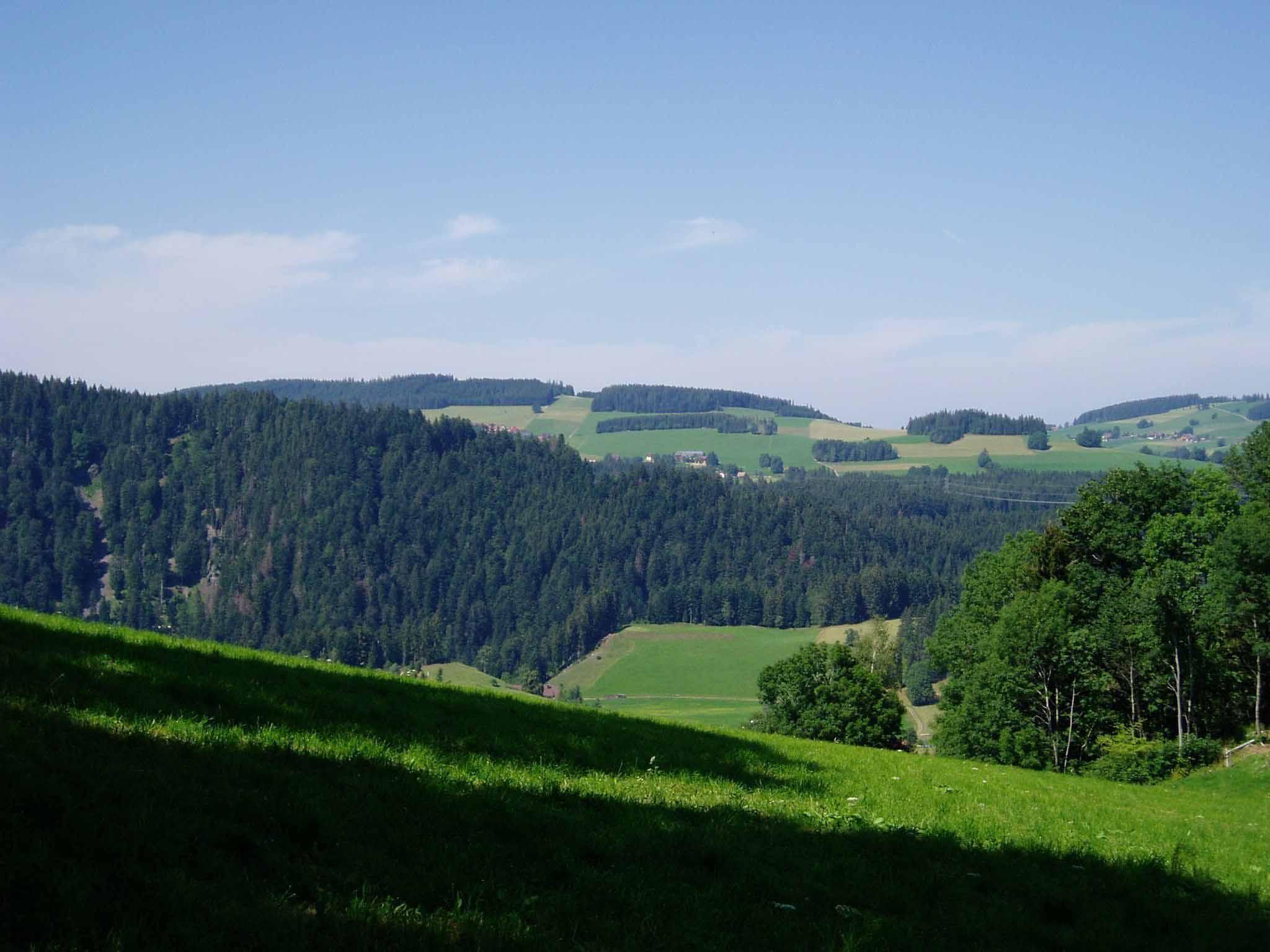 Aussicht vom Michelthomilishof