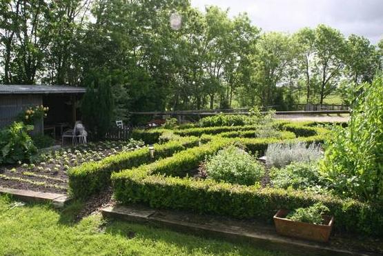 Bauerngarten mit Blumen und Kräutern