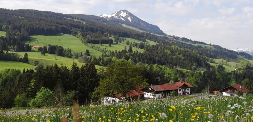 Allgäuer Bergwelten faszinieren auf dem Bergbauernhof Rief
