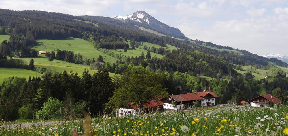 Bergbauernhof Rief