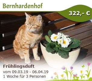 Frühlingsduft liegt in der Luft - Bernhardenhof