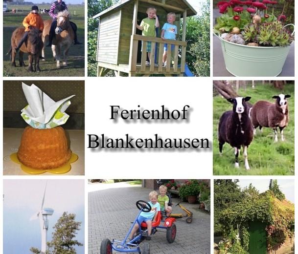 Ferienhof Blankenhausen – Tolles Herbstprogramm an der Nordseeküste