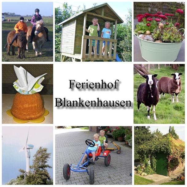 Bauernhofurlaub in Ostfriesland
