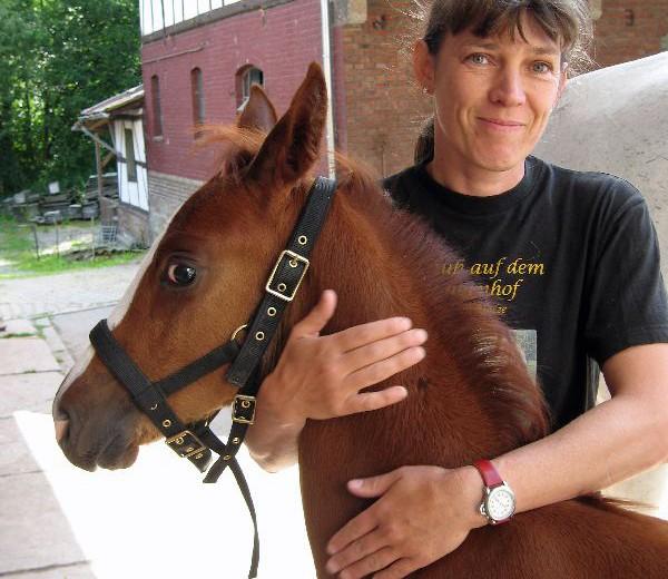 Interview mit Christine Hotze-Schaefer