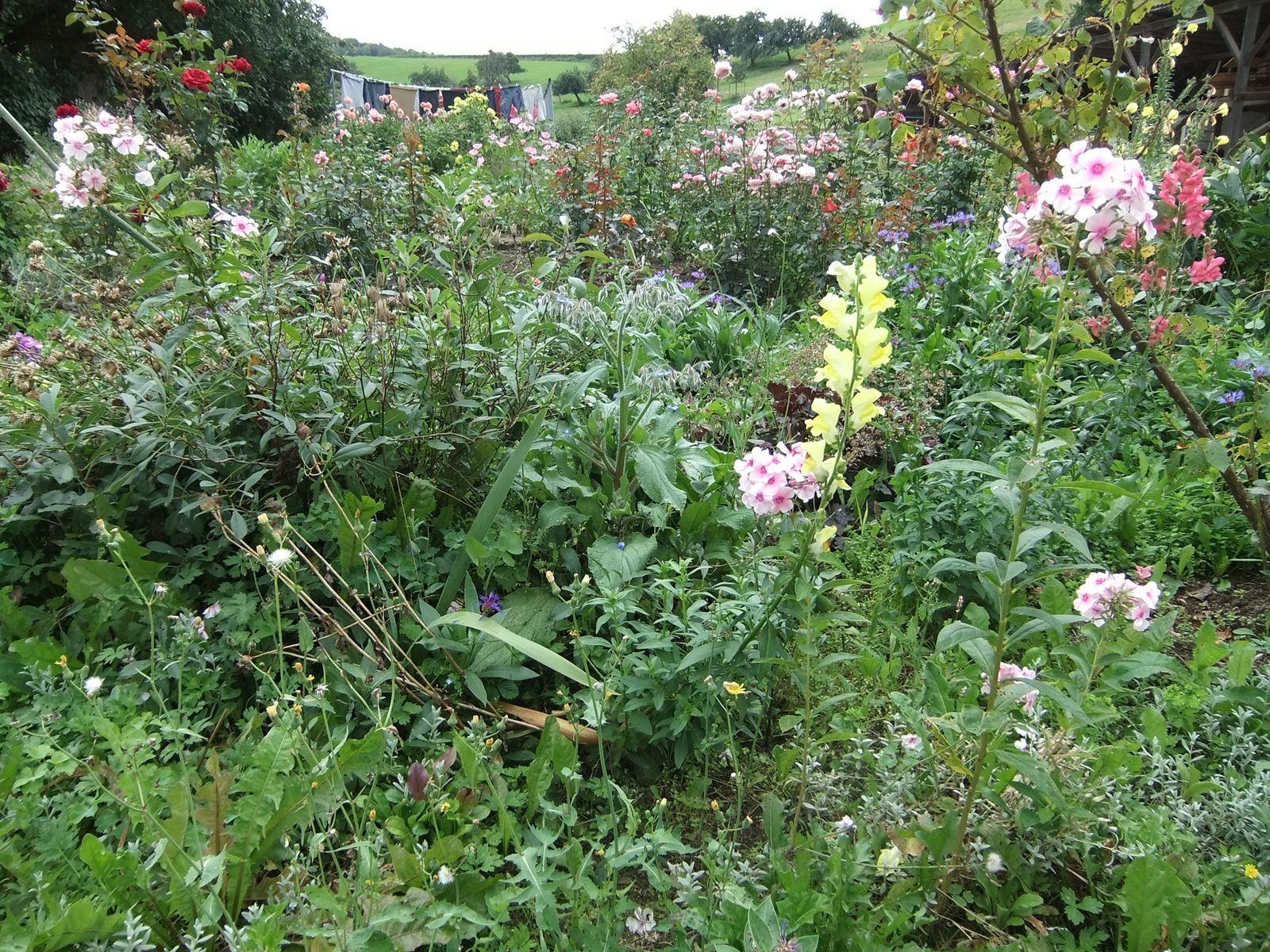 Der Garten auf dem Hof Käsrah