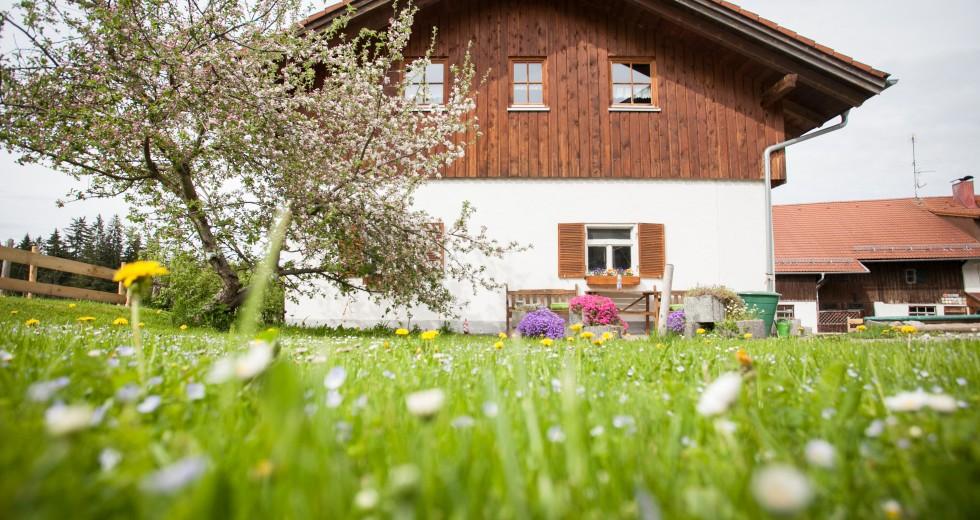 Herrliche Ostallgäu-Wandertouren vom Bauernhof Schmölz in Nesselwang