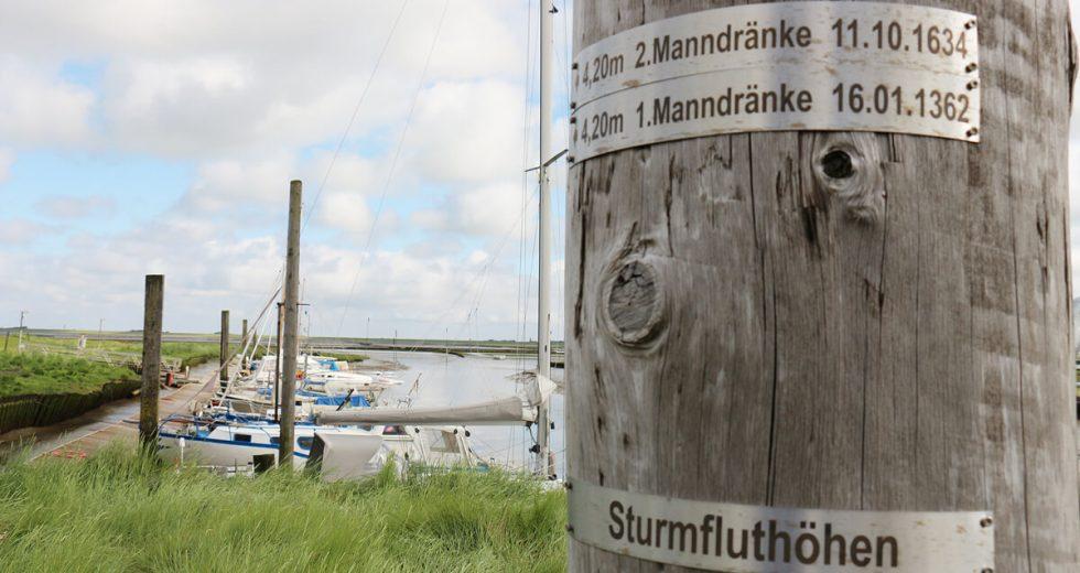 Persönlicher Tipp vom Hof Tümlauer Bucht: Besuch des malerischen Tümlauer Hafens an der Nordsee!