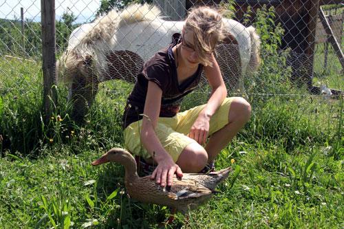 Enten und Pony auf dem Ferienhof Haus Sonnenschein