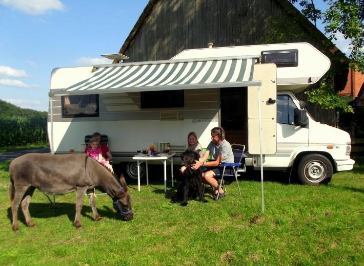Erlebnisferien im Herbst auf der Animal Farm am niedersächsischen Teufelsmoor