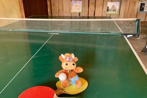 Ferienhof-Ritter-Tischtennis