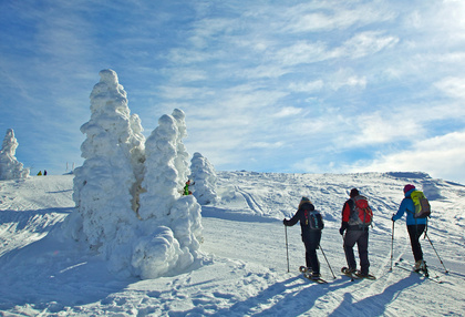 Wintersportregion  – Bayerischer Wald