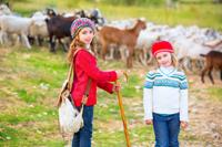 Herbst 2014: Bauernhofferien auf Höfen mit aktiver Landwirtschaft