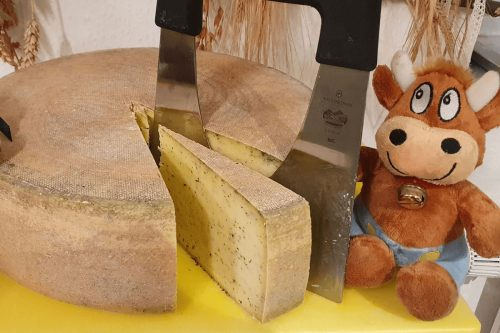 Friederike-Ferienhof-Hirschfeld-Käse