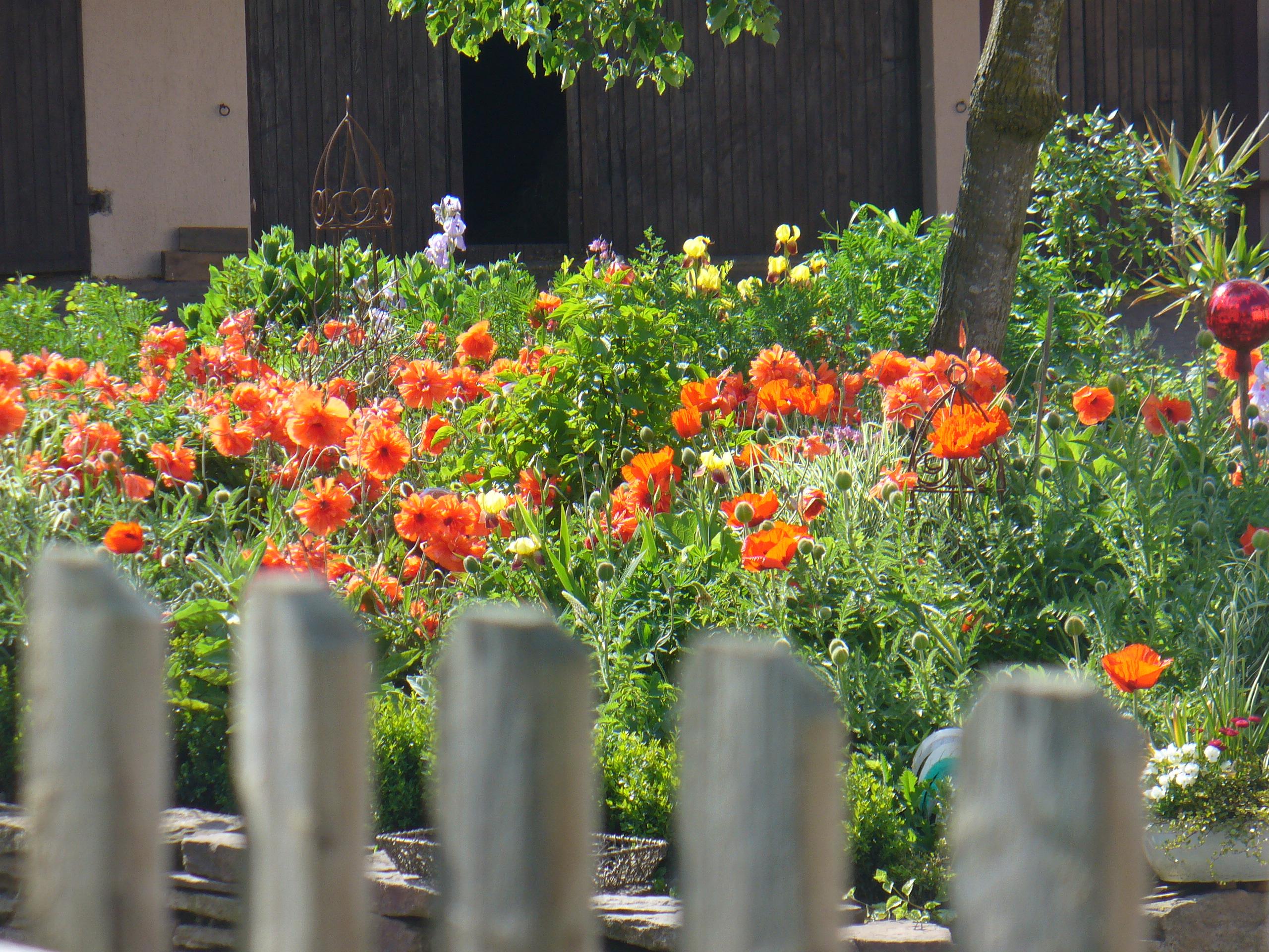 Garten auf dem Mayischhof