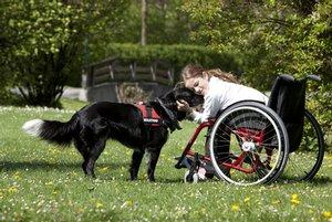 Bauernhofferien in behindertengerechten Quartieren für Naturliebhaber mit Handicap