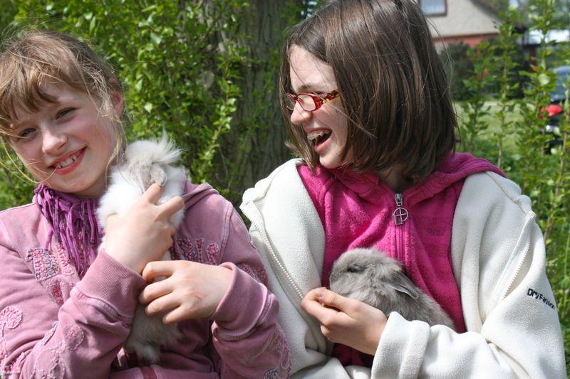 Hasen auf dem Ferienhof Rickert