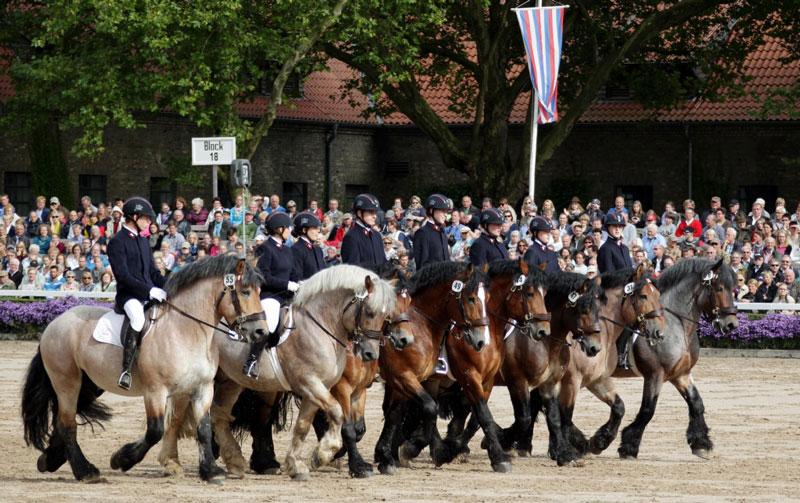 Persönlicher Tipp der Familie Bergmann-Scholvien von der Vita-Farm: die deutsche Pferdehauptstadt Warendorf