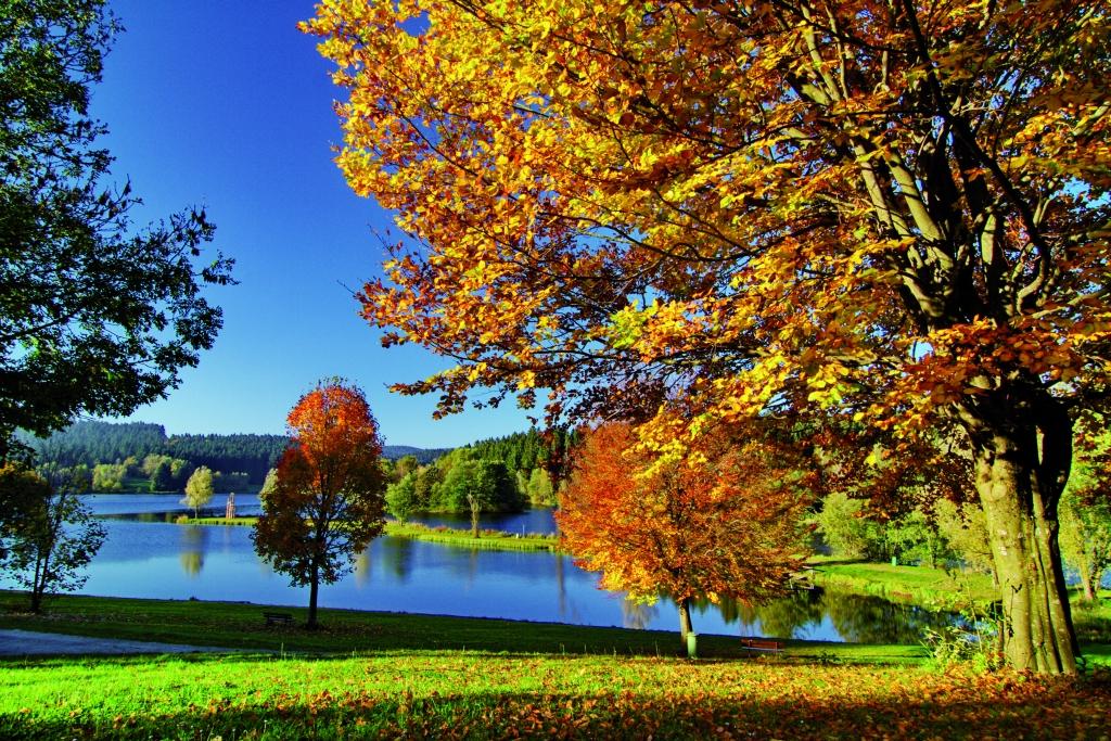Herbst am Landhaus Altweck