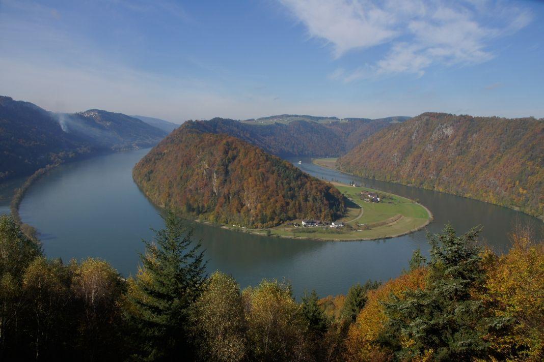 Herbst an der Donauschlinge in der Nähe vom Landhaus Altweck