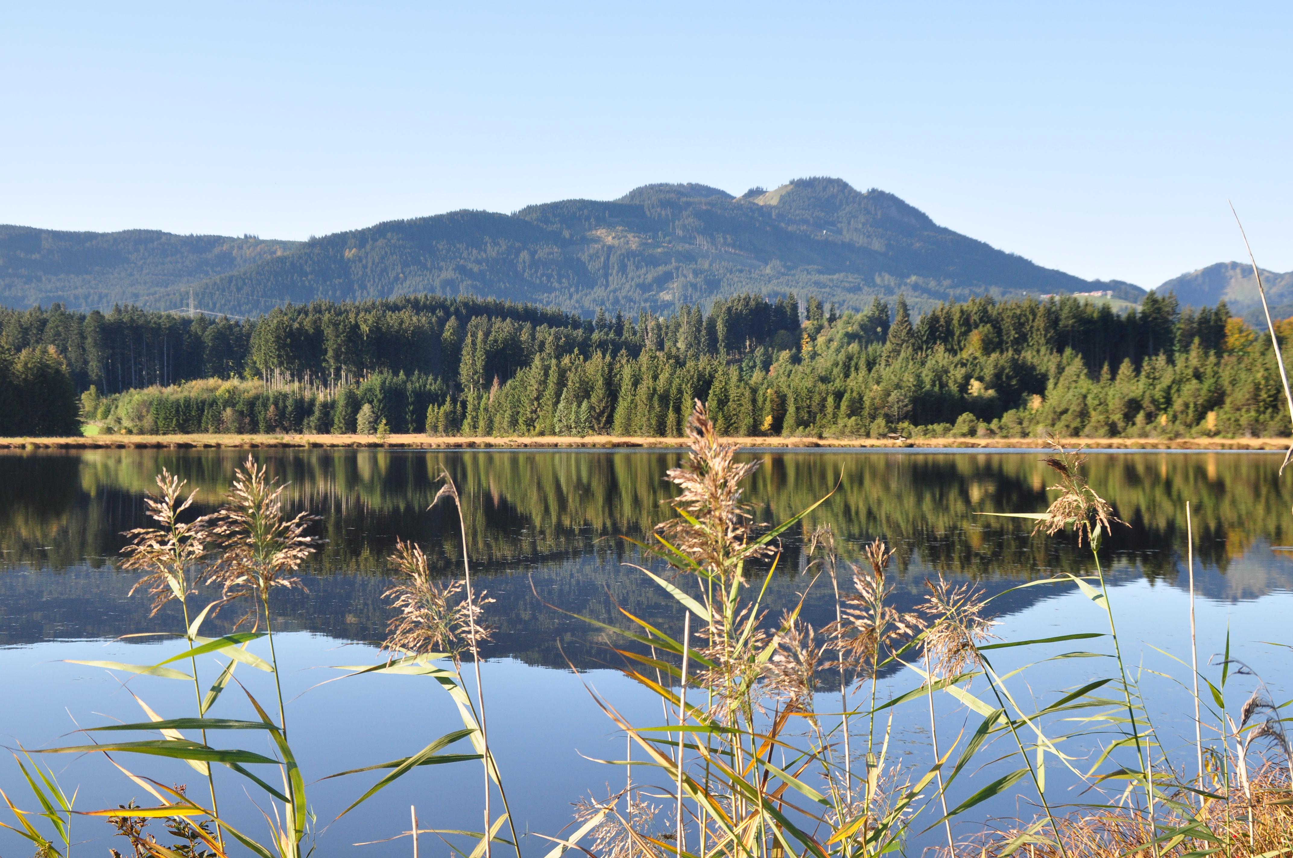 Hof Alpenseeblick am See im Herbst