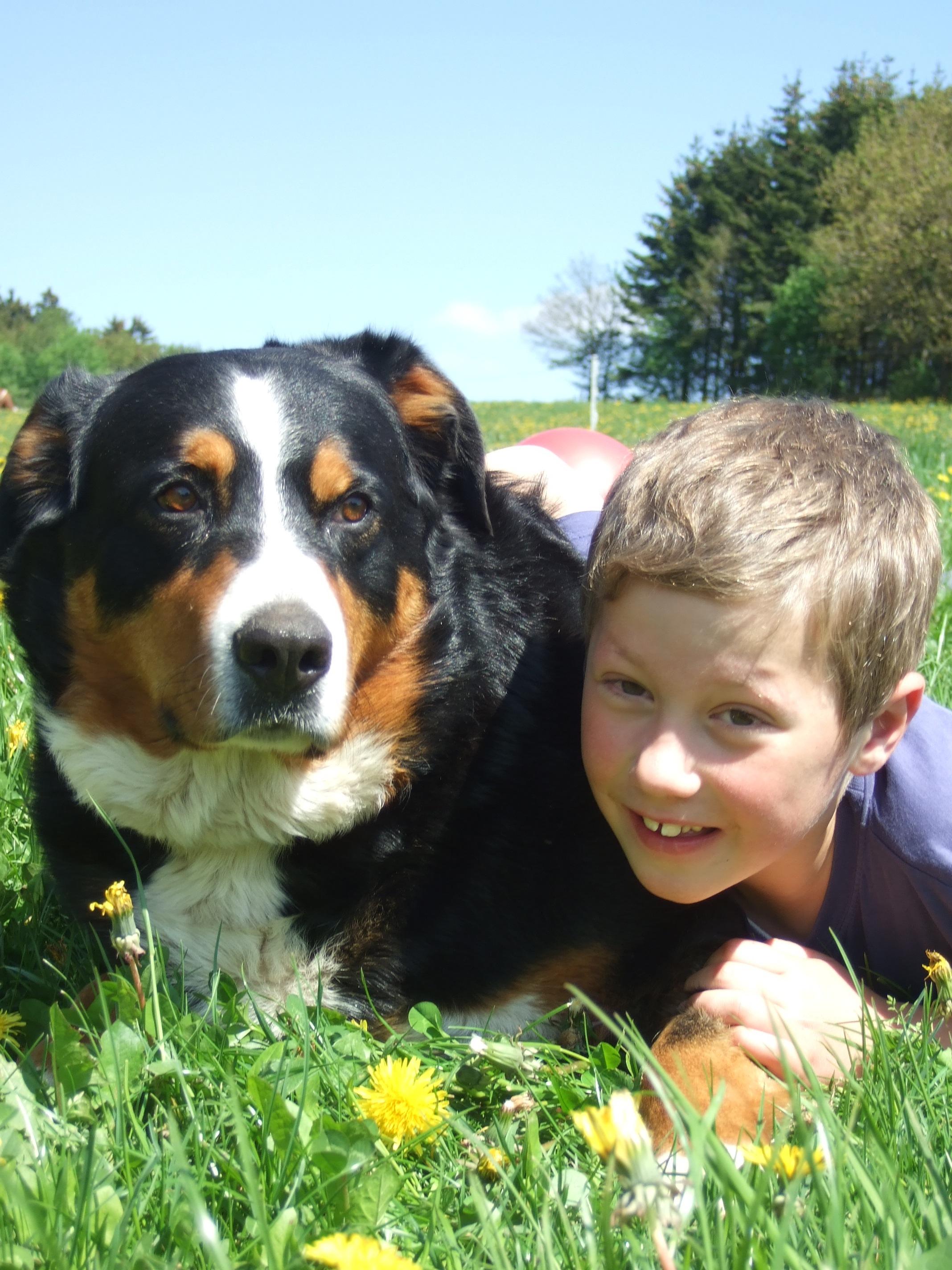 Hund zum Kuscheln  auf dem Ferienhof Pütz