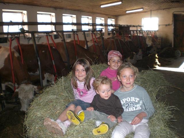 Im Kuhstall vom Landhaus Altweck