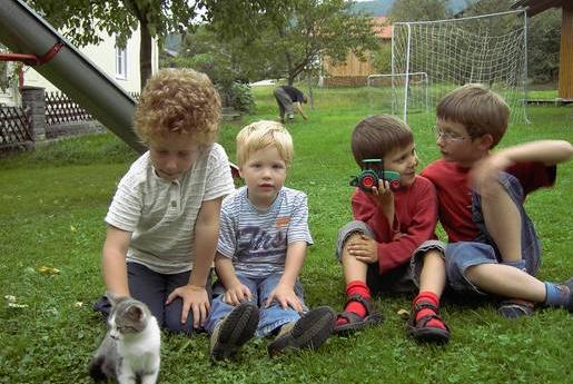 Katzen auf dem Ferienbauernhof Sieglinde