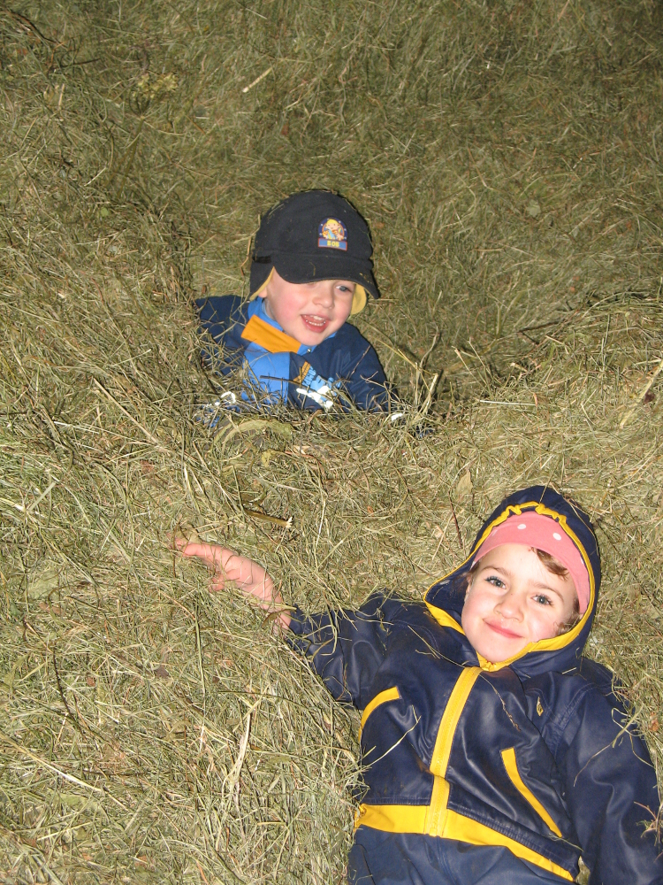Kinder im Heu auf dem Kinderbauernhof Hindelang