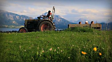 Urlaub beim Bauern Franz