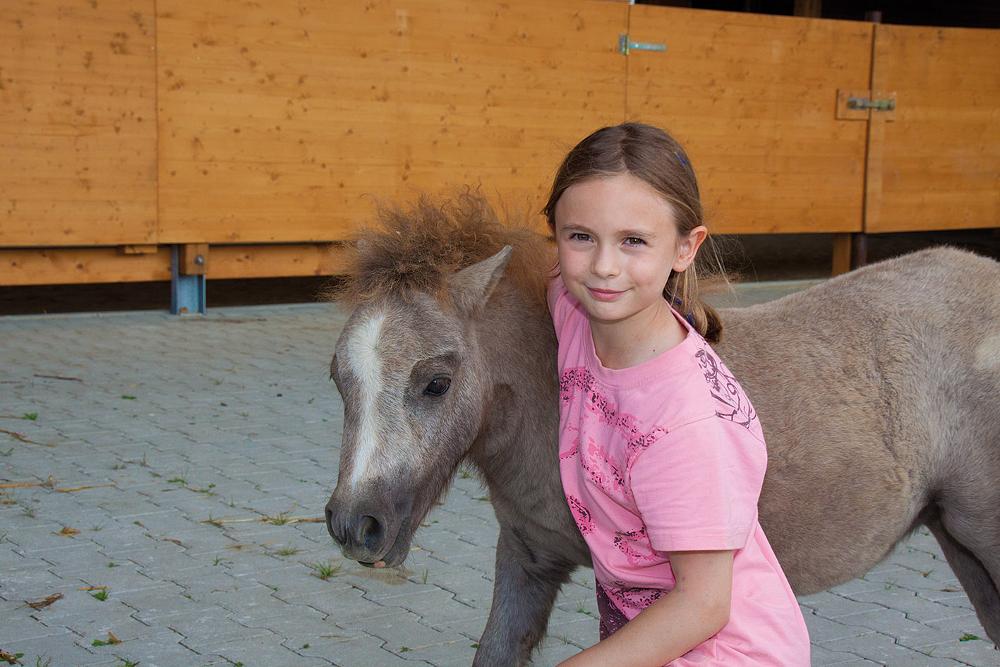 Kuscheln mit Ponies inklusive