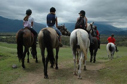 Das besondere Frühlingsfeeling – gemeinsam genießen im Gruppenurlaub auf  dem Bauernhof