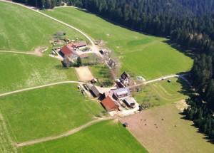 Urlaub auf dem Walterhof im idyllischen Schwarzwald – Reiterparadies inklusive!