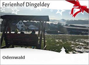 Winter auf dem Ferienhof Dingeldey