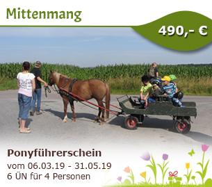Echt abenteuerlich - Ponyführerschein - Mittenmang