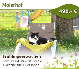 Frühlingserwachen auf dem Moierhof