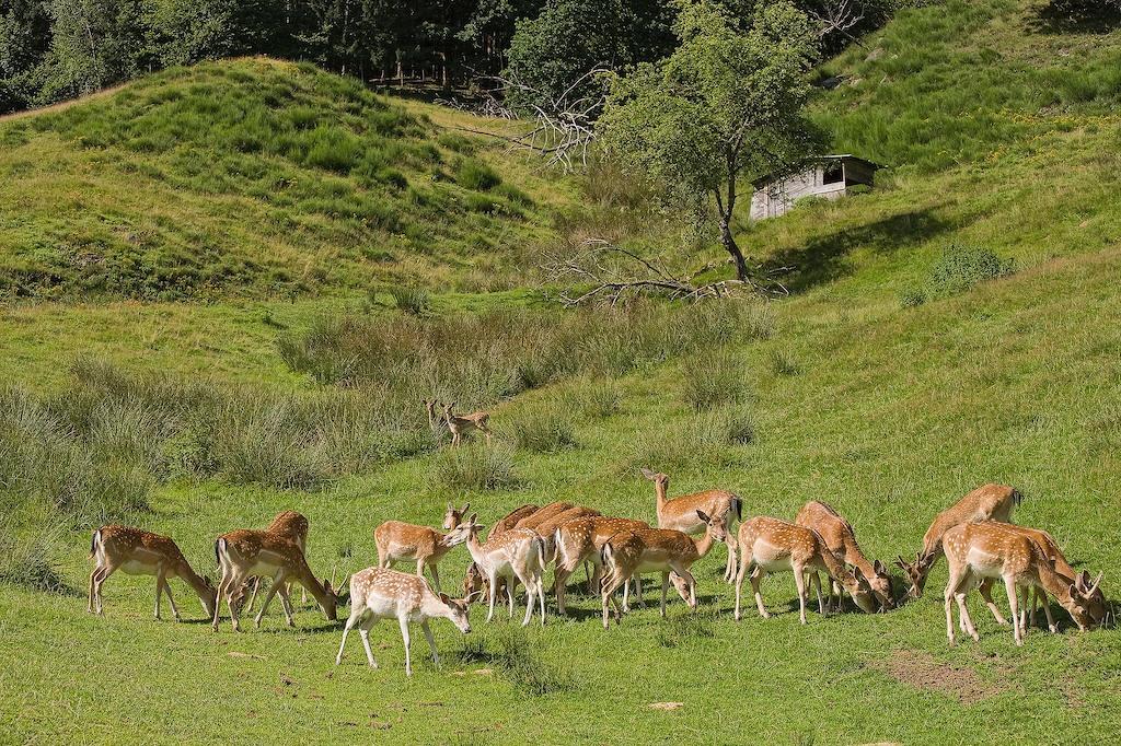 Natur erleben auf dem Schmidbauernhof