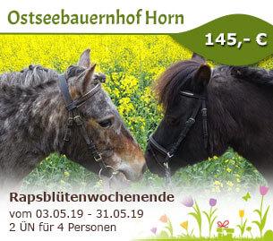 Rapsblütenwochenende - Ostseebauernhof Horn