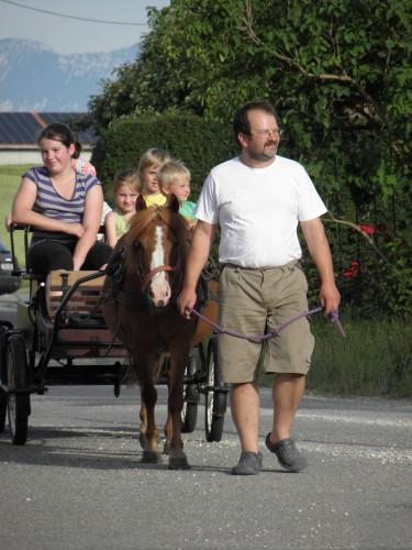 Ponyreiten und Kutschfahrten auf dem Schauerhof