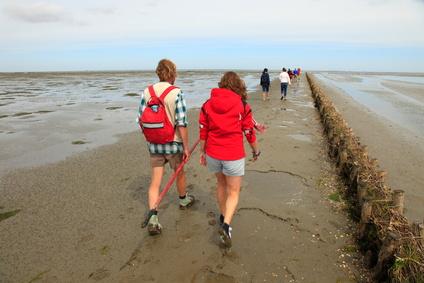Bauernhofurlaub ein Sommertraum an der Nordsee mit ihren Inselparadiesen und Halligen