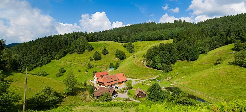 Ruhige Alleinlage des Schmidbauernhof im Mittleren Schwarzwald